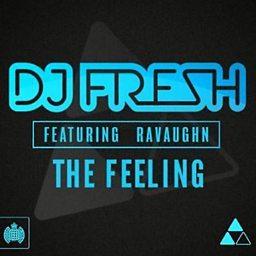 The Feeling (feat. RaVaughn)