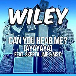 Can You Hear Me? (Ayayaya) (feat. Skepta, Jme & Ms D)