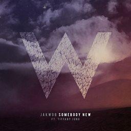 Somebody New (feat. Tiffani Juno)