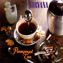 Pennyroyal Tea