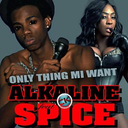 Gyal Bruk Out (feat. Spice)