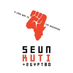 Higher Consciousness (feat. Seun Kuti & Fela's Egypt 80)