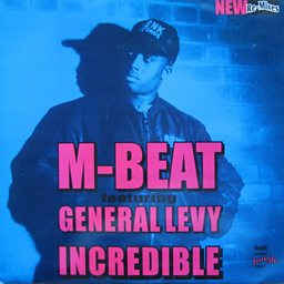 Incredible (feat. General Levy)