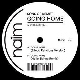 Going Home (Blludd Relations Version)