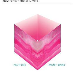 Mister Divine