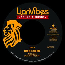 We Own Enemies
