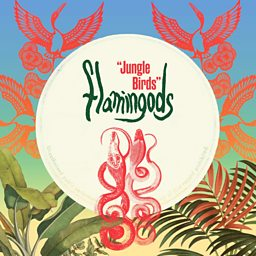Jungle Birds (Ben Hayes Remix)