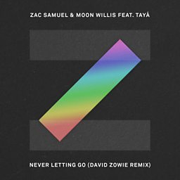 Never Letting Go (David Zowie Remix)