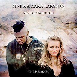 Never Forget You (LuvBug Remix)