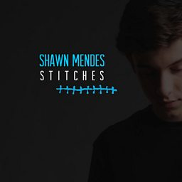 Stitches (3LAU Remix)
