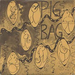 Papa's Got A Brand New Pigbag