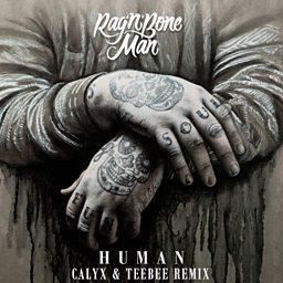 Human (Calyx & TeeBee Remix)