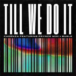 Till We Do It (feat. Prynce Mini & Bugle)