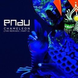 Chameleon (Melé Remix)