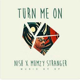 Turn Me On (feat. Mumzy Stranger)