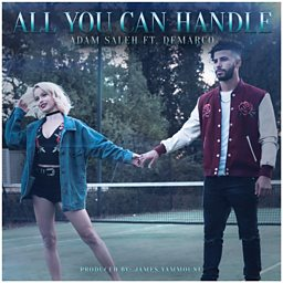 All You Can Handle (feat. Demarco)