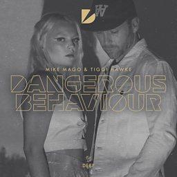 Dangerous Behaviour (Billon Remix)
