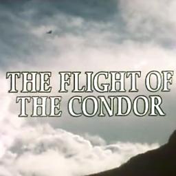Floreo De Llamas ('Flight Of The Condor' Theme Tune)