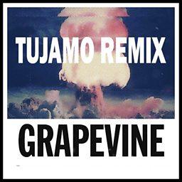 Grapevine (Tujamo Remix)