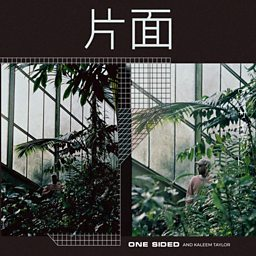 One Sided (feat. Kaleem Taylor)