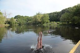 Hampstead Heath Ladies Pond. Photo: Ruth Corney