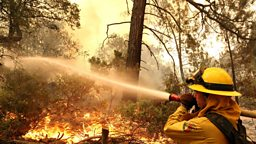 Wildfires in California 美国加利福尼亚洲森林大火