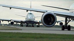 Heathrow expansion and dog lifeguard training 希思罗机场扩建, 救生犬的训练