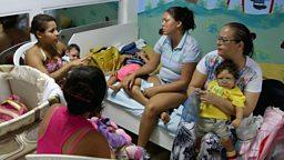 Zika virus and unusual job in Austria 感染寨卡病毒的婴儿数量,奥地利城镇征召隐士