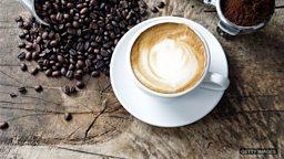 Coffee under threat 咖啡种植业面临威胁