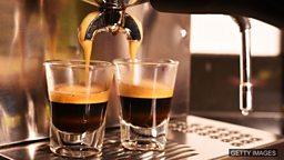 Good coffee, happy cows 喝咖啡可能延长寿命、养牛户关注动物福祉
