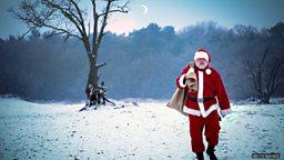 The perfect Santa