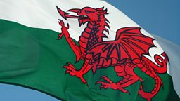 cwtch welsh meaning
