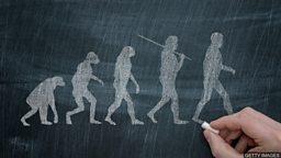 "Human, humankind, people, humanity 用英语说 ""人"""