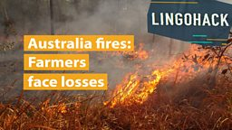 Australia fires: Farmers face losses