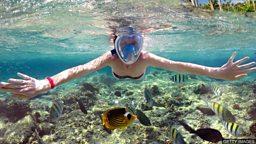 Living under the sea 人类能在水下生活吗?