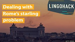 Dealing with Rome's starling problem