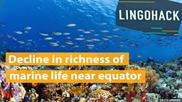 Decline in richness of marine life near equator