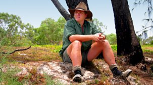 Ray Mears Goes Walkabout - 3. Torres Strait