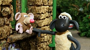 Shaun The Sheep - Series 2: 14. Hide And Squeak