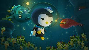 Octonauts - Series 1 - The Whale Shark