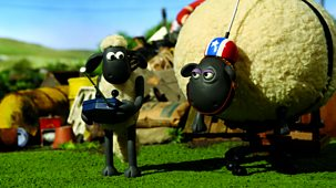 Shaun The Sheep - Series 2: 34. Shirley Whirley