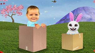 Baby Jake - Series 2 - Baby Jake Loves Cardboard Boxes