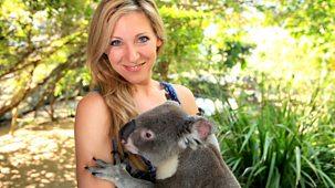 Naomi's Nightmares Of Nature - Series 1 - Australia: Jungle