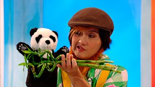 Show Me Show Me - Series 4 - Bears And Bamboo