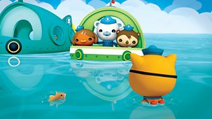 Octonauts - Series 2 - Triggerfish