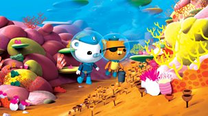 Octonauts - Series 2 - Damselfish