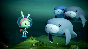 Octonauts - Series 2 - Manatees