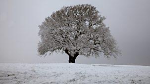The Great British Year - Original Series: 1. Winter