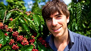 This World - The Coffee Trail With Simon Reeve