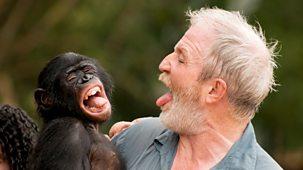 Monkey Planet - Family Matters